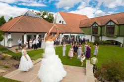 Wedding Grounds