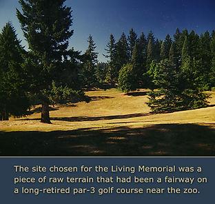 memorial site raw terrain copy.jpg