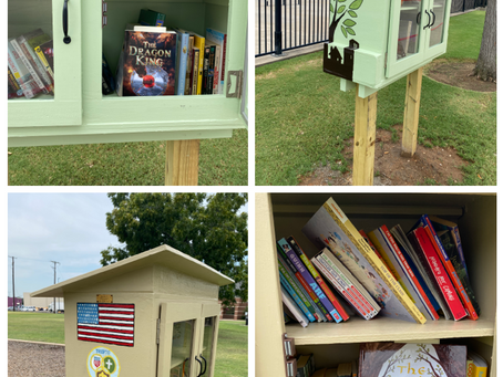 Books in Little Libraries