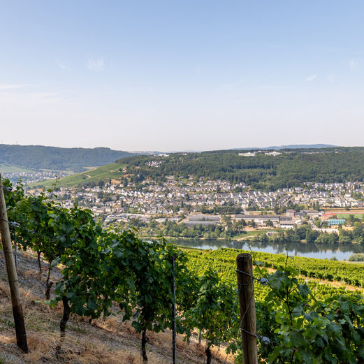Four Cities to Visit Before Your Rhine & Moselle Cruise