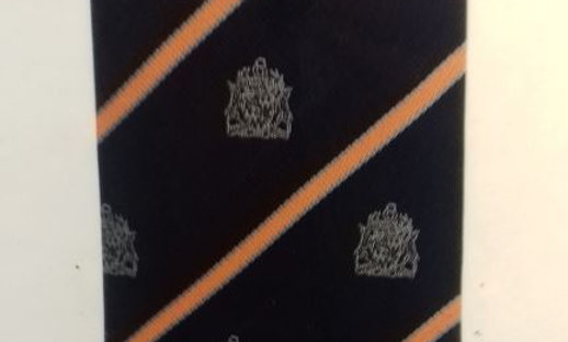 Official House Tie