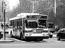 bus-westprep.jpg