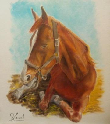 El caballo de Laura