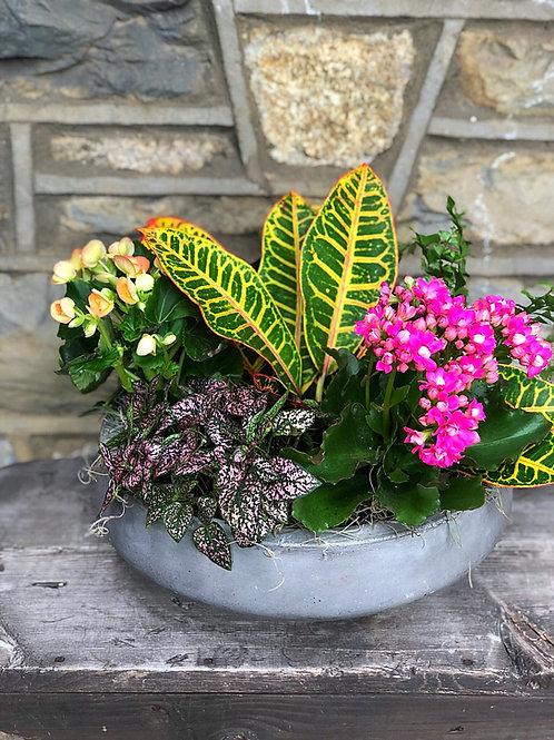 Flowering Foliage Planter