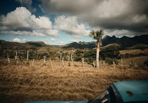 Trinidad_0219_257.jpg