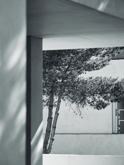 Dessau_Bauhaus_0821_041.jpg