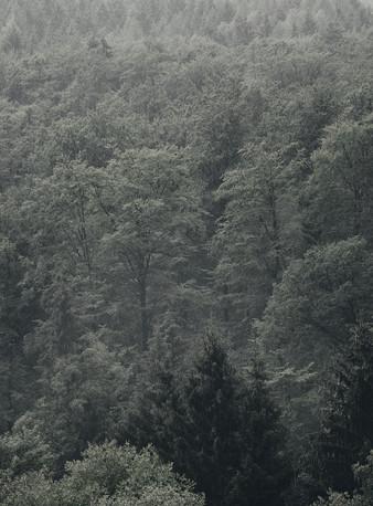Rammelsberg_033.jpg