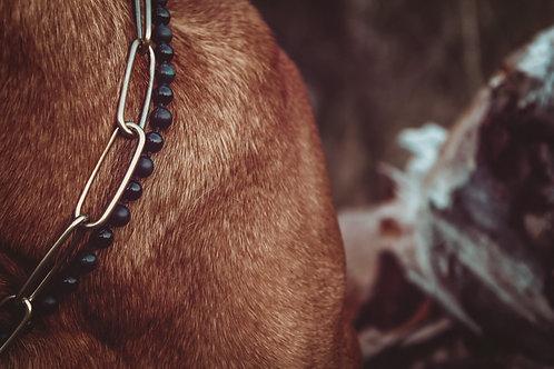 Amarok - Hundekette