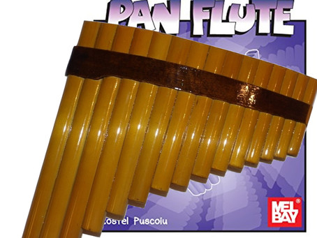 How to buy a beginner pan flute?