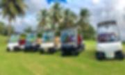 Golf Car Sales in Puerto Rico