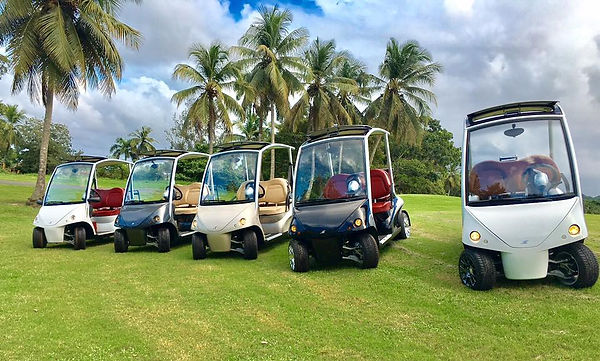 Golf Car Sales in Puerto Rico