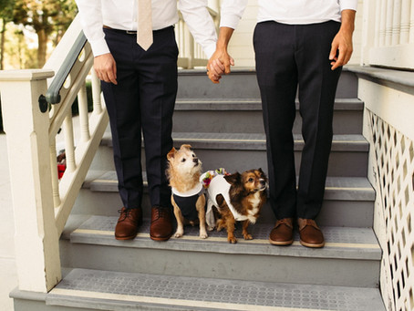 GAY WEDDING IDEAS WITH DOGS