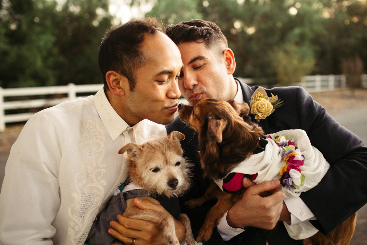 Gay wedding photoshoot with dogs