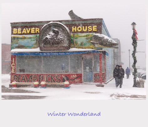Winter Wonderland Cover.jpg