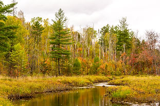Slim Lake Portage-4-web.jpg