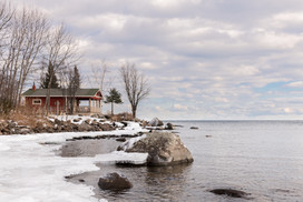 Cove Point in Winter