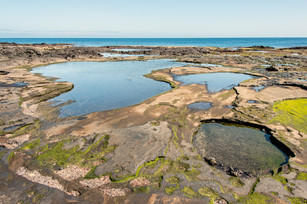 Tide Pools at Puerto Egas