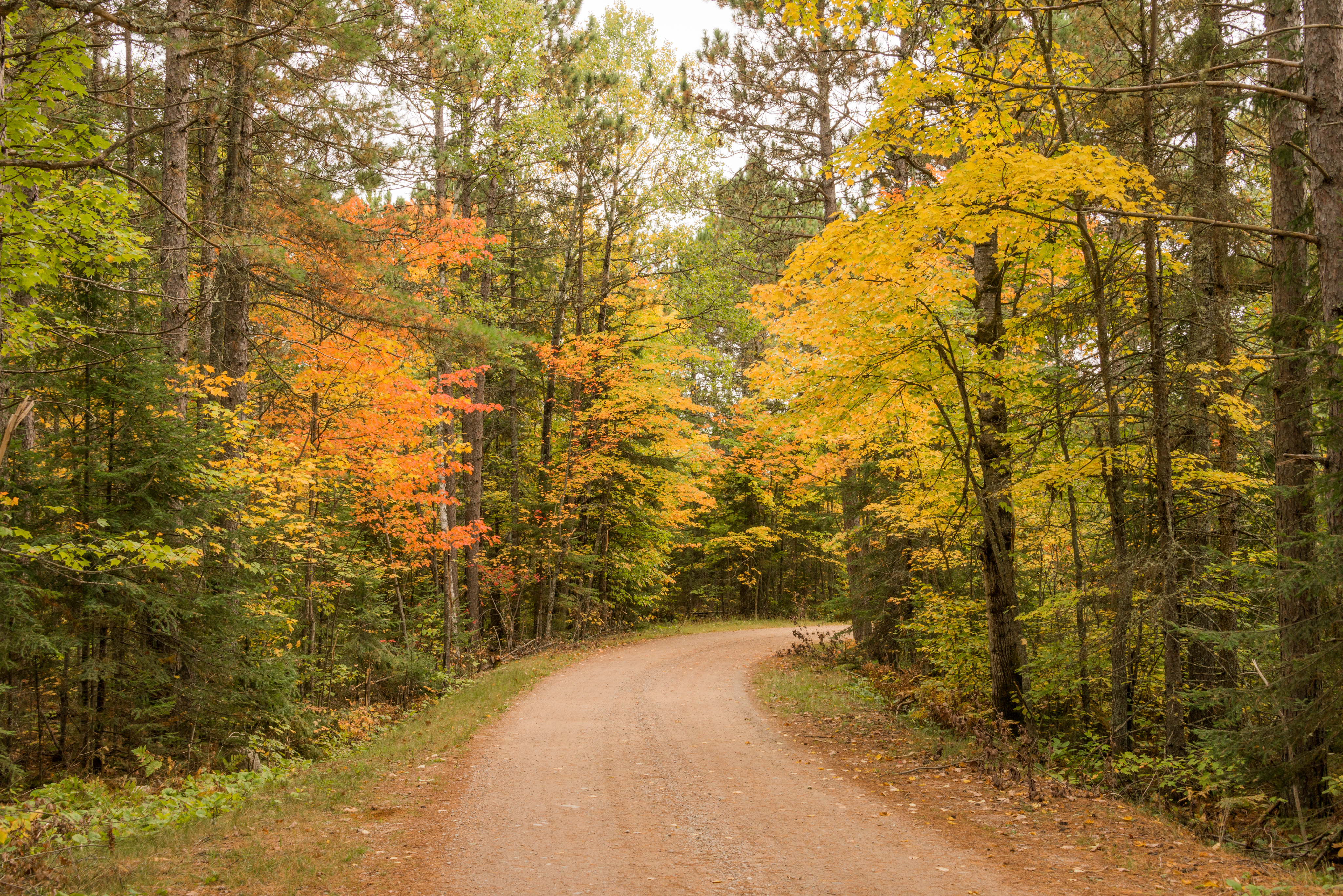 Big Lake Access Road on the Echo Trail