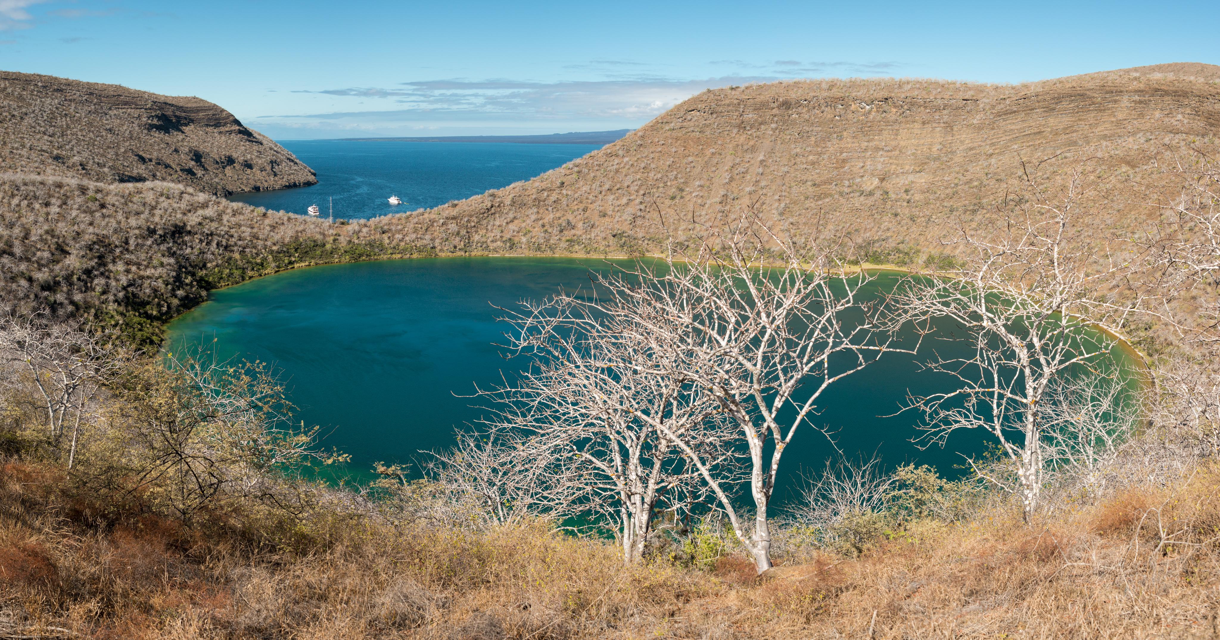 Tagas Cove