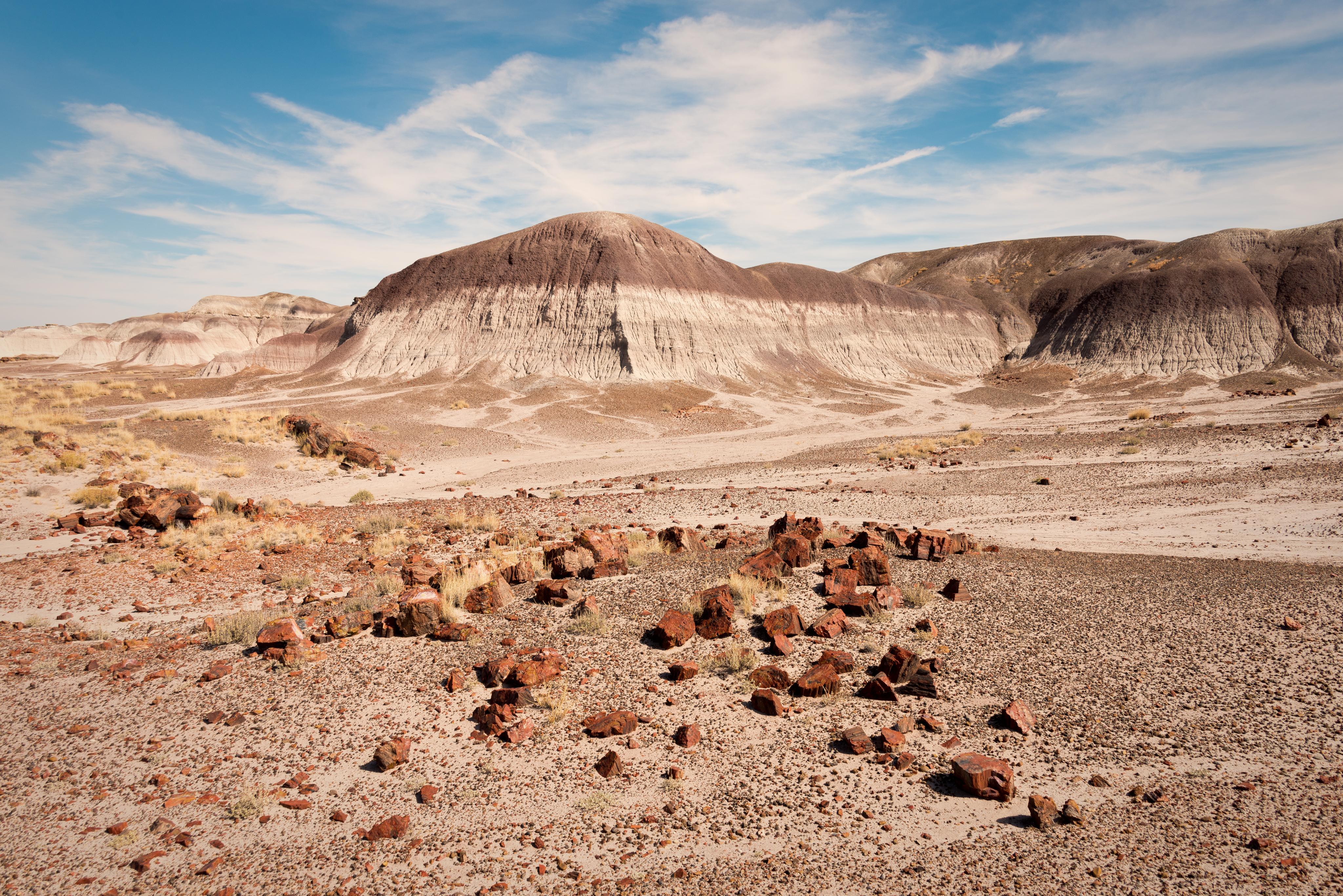 Petrified Forest National Park Badlands