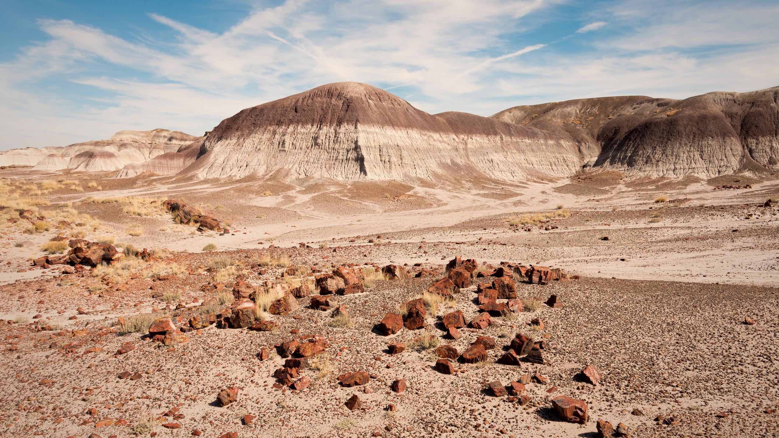 Petrified Forest National Park Badlands-