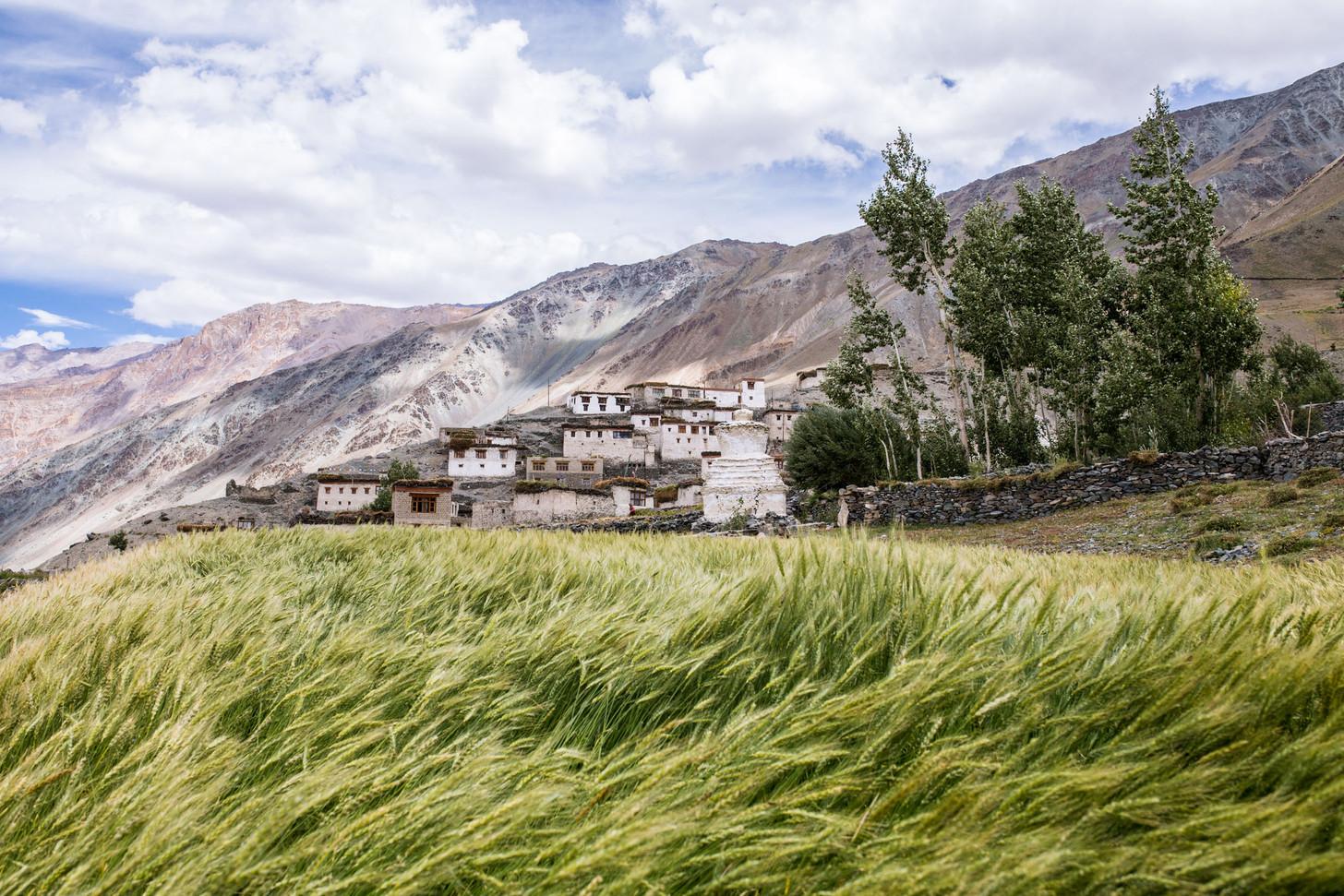 A Himalayan Village