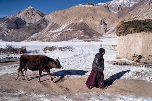 ACrowther-HimalayanIce-30-1.jpg