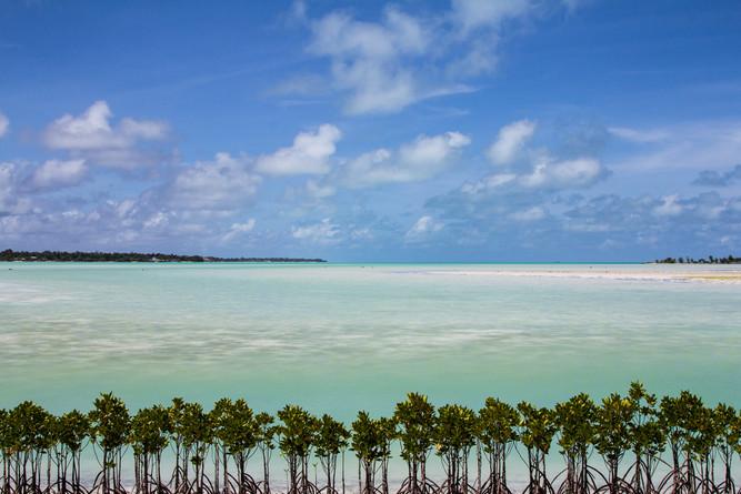 ACrowther-KiribatiIsland-1.jpg