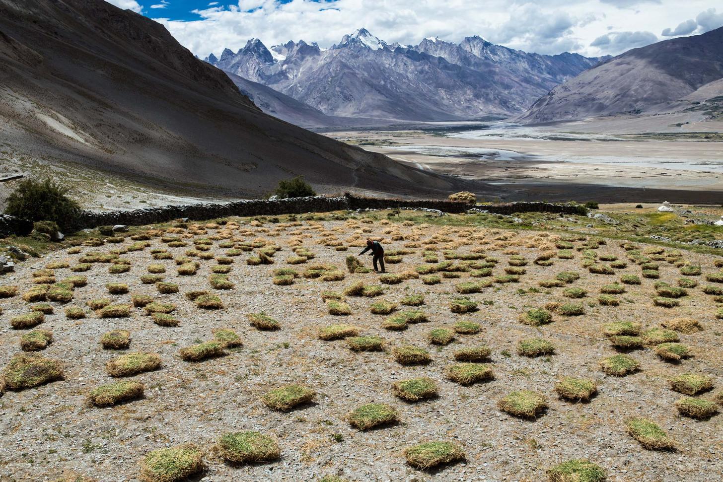 The Himalayan Village