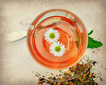 Photo of herbal tea in glass cup