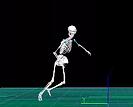 Спорт Optical Motion Capture Qualisys