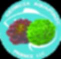 website logo transparent png-lw-scaled.p