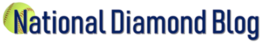 National Diamond Blog Logo Photo  7 inch