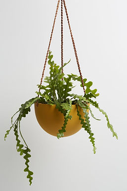 Dome Hanging Planter - Golden