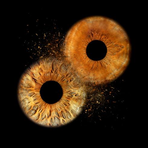2 braune Augen für einen Clash