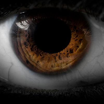 Eine Nahaufnahme eines braunen menschlichen Auges. Es ist die Pupille, die Iris, die Sklera (weisse Augenhaut) zu sehen. Nur die braune Iris ist farbig und hat wunderschöne Vertiefungen. Das Iris-Foto ist einzigartig und ein Blick durch das Fenster der Seele