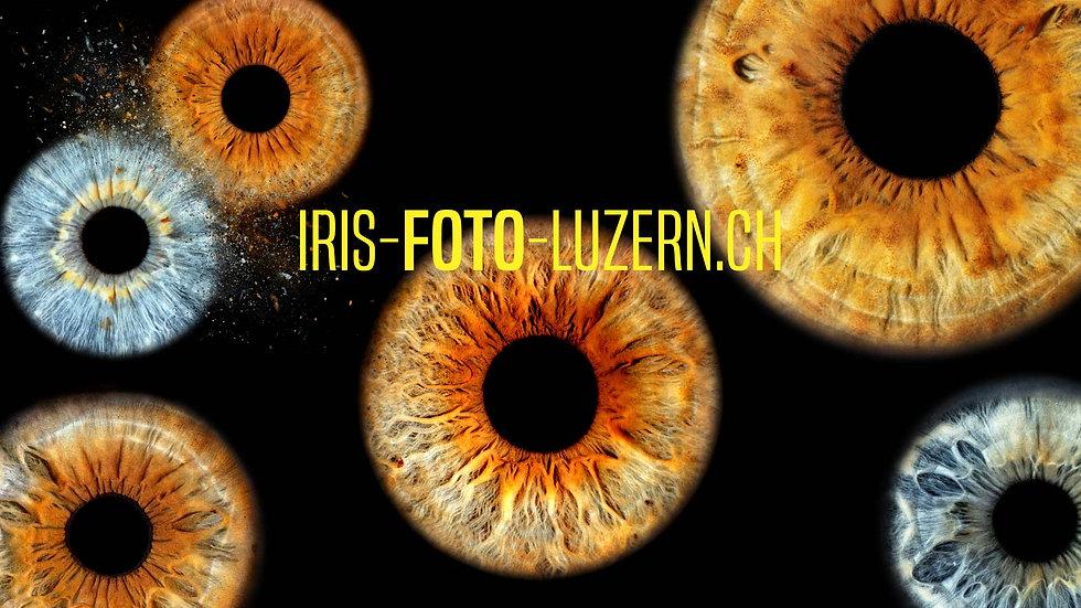 irisfotografie-luzern.jpg