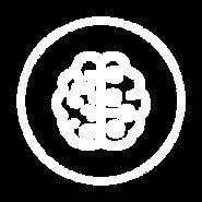 WixElements_Website_2-20.png