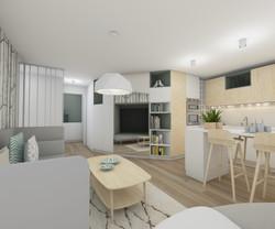 architecture d'intérieur-séjour