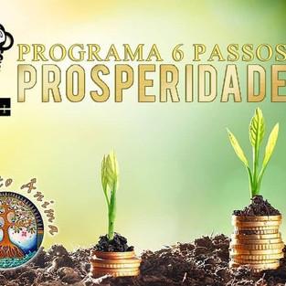 6 PASSOS PROSPERIDADE - COM KARINA RODRIGUES