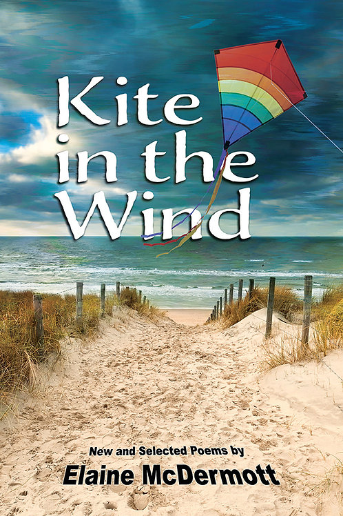 Kite in the Wind
