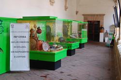 Museu de Artesanato