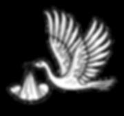 Stork_edited.png