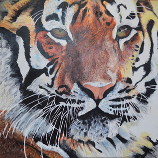 Tiger Acrylic on Canvas Painting