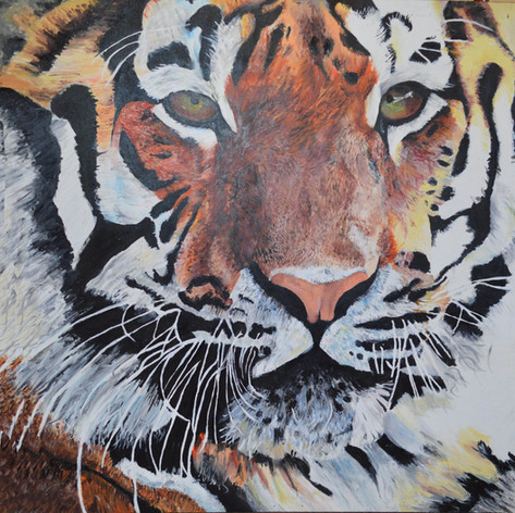 Tiger_Acrylic_Canvas