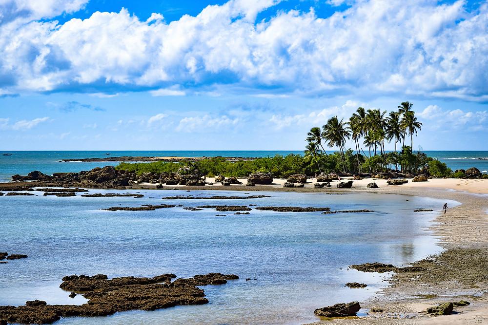 Corales a la vista por la marea baja