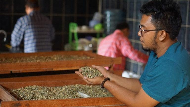 インドネシア ガヨ アントン農園 ワイニー 250g