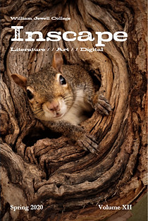 inscape2020cover.png