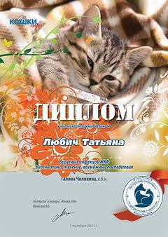 Вебинар 10 04 21 102 кошки 4 Любич Татьяна.jpg