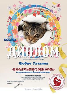 Вебинар 04 06 17 5 21 92 кошки 5 Любич Т
